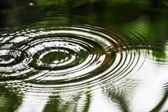 Ο κυματισμός νερού στους κύκλους κυμάτων διέδωσε έξω αυτό προκαλείται από τα σταγονίδια νερού στοκ εικόνα