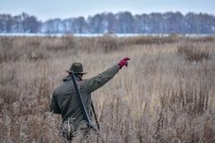 Ο κυνηγός πουλιών περπατά πέρα από τον τομέα με το σκυλί του σε ένα κυνήγι περδικών και την παρουσιάζει πού να πάει στοκ φωτογραφία