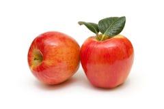 Ο κόκκινος καρπός μήλων με βγάζει φύλλα στην άσπρη ανασκόπηση Στοκ Εικόνες