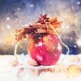 Ο κόκκινος κλάδος της χειμερινής Apple κολλά το μικρό έλκηθρο γλυκάνισου κανέλας Στοκ Εικόνες