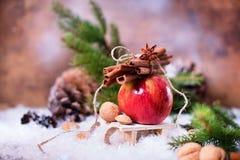 Ο κόκκινος κλάδος της χειμερινής Apple κολλά το μικρό έλκηθρο γλυκάνισου κανέλας Στοκ φωτογραφία με δικαίωμα ελεύθερης χρήσης