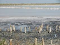 Ο κόλπος Sivash, Κριμαία Στοκ εικόνα με δικαίωμα ελεύθερης χρήσης