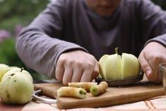 Ο κόπτης μαχαιριών της Apple με τις κομμένες φέτες αφαιρεί τον πυρήνα και ολόκληρη φωτογραφία μήλων κοντά επάνω Στοκ Εικόνες