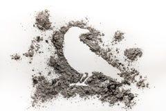 Ο κόρακας ή το κοράκι σκιαγραφεί το σχέδιο που γίνεται στην τέφρα, ρύπος, σκόνη ως de Στοκ εικόνες με δικαίωμα ελεύθερης χρήσης