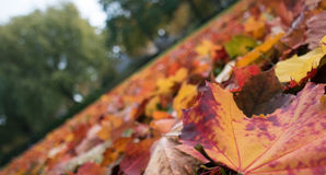 Ο κόσμος αλλάζει το χρώμα Στοκ εικόνα με δικαίωμα ελεύθερης χρήσης