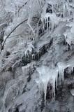 Ο κόσμος πάγου Στοκ Εικόνα