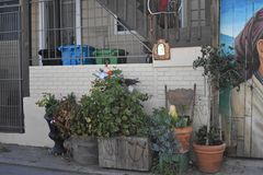Ο κόσμος του Σαν Φρανσίσκο ` s αναγνώρισε τις βαλσαμώδεις τοιχογραφίες αλεών, 39 στοκ φωτογραφίες