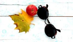 ο κύκλος πόλωσε τα αναδρομικά γυαλιά ηλίου, Στοκ Εικόνα