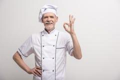 ο κύριος μάγειρας απομόνωσε το λευκό Στοκ Εικόνες