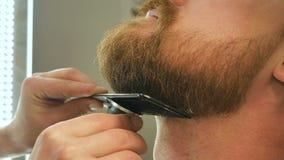 Ο κύριος barbershop με μια ειδική χτένα και μια ηλεκτρική ξυριστική μηχανή κόβει μια γενειάδα, σαλόνι ομορφιάς για τα άτομα απόθεμα βίντεο