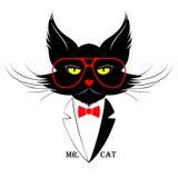 Ο κ. Cat Στοκ Φωτογραφία