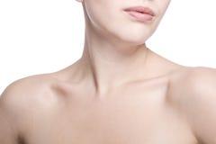 ο λαιμός κινηματογραφήσ&epsil στοκ εικόνες με δικαίωμα ελεύθερης χρήσης