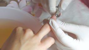 Ο μανικιουρίστας χρησιμοποιεί το επαγγελματικό εργαλείο μανικιούρ απόθεμα βίντεο