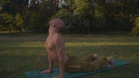 Ο μαυρισμένος τύπος με το γυμνό κορμό εκτελεί το πρωί Asanas γιόγκας στο δάσος απόθεμα βίντεο