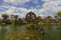 Ο μαύρος κύκνος κολυμπά με τα ψάρια koi με το watermill ως βλαστός υποβάθρου στοκ εικόνες με δικαίωμα ελεύθερης χρήσης