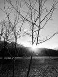 Ο Μαύρος & λευκό στοκ εικόνες