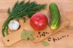 Ο μεγάλος ρόδινος άνηθος σκόρδου αγγουριών ντοματών και το μαύρο πιπέρι στοκ εικόνα