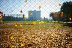 Ο μεταλλικός καθαρός-διαμορφωμένος φράκτης από το καλώδιο με το φύλλο φθινοπώρου σε το σε ένα υπόβαθρο της πόλης θαμπάδων στοκ φωτογραφίες