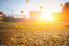 Ο μεταλλικός καθαρός-διαμορφωμένος φράκτης από το καλώδιο με το φύλλο φθινοπώρου σε το σε ένα υπόβαθρο της πόλης θαμπάδων στοκ εικόνες με δικαίωμα ελεύθερης χρήσης