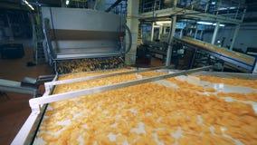 Ο μεταφορέας εργοστασίων τροφίμων κινεί τα μέρη των πατατακιών πατατών φιλμ μικρού μήκους