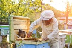 Ο μελισσοκόμος εργάζεται με τις μέλισσες και τις κυψέλες στο μελισσουργείο Στοκ φωτογραφίες με δικαίωμα ελεύθερης χρήσης