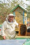 Ο μελισσοκόμος εργάζεται με τις μέλισσες και τις κυψέλες στο μελισσουργείο Στοκ φωτογραφία με δικαίωμα ελεύθερης χρήσης