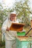 Ο μελισσοκόμος εργάζεται με τις μέλισσες και τις κυψέλες στο μελισσουργείο Στοκ Φωτογραφία