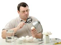 Ο μηχανικός Phytocontrol κοιτάζει επίμονα στα άσπρα αυγά κοτόπουλου Στοκ Εικόνες