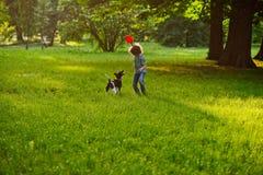 Ο μικρός σγουρός συνεργάτης εκπαιδεύει το doggie σε έναν χορτοτάπητα στο πάρκο Στοκ Εικόνες