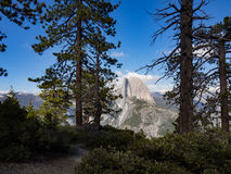 Ο μισός θόλος φιλτράρισε μέσω sequoia των δέντρων που είδαν από το σημείο παγετώνων, εθνικό πάρκο Yosemite Στοκ Εικόνα