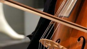 Ο μουσικός οδών που παίζει το βιολοντσέλο κοντά επάνω βλέπει Βιολοντσελίστας στις σειρές τόξων γαντιών ήπια απόθεμα βίντεο