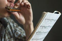 Ο μουσικός παίζει τη φυσαρμόνικα Στοκ εικόνα με δικαίωμα ελεύθερης χρήσης