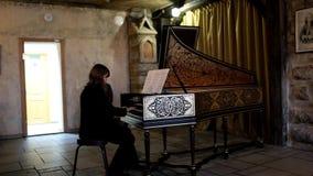 Ο μουσικός παίζει το αρπίχορδο φιλμ μικρού μήκους