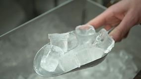 Ο μπάρμαν παίρνει τα κομμάτια του πάγου για να κάνει τα ποτά στο φραγμό απόθεμα βίντεο