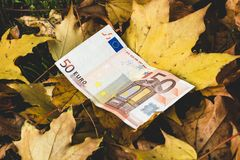 Ο Μπιλ 50 ευρώ βρίσκεται στα κίτρινα πεσμένα φύλλα φθινοπώρου, concep στοκ εικόνα