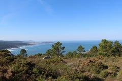 Ο μπλε ωκεανός από τη δασική άποψη Στοκ Φωτογραφίες