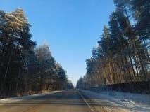 ο μπλε παγετός σκοτεινής μέρας κλάδων βρίσκεται χειμώνας δέντρων χιονιού ουρανού Στοκ εικόνα με δικαίωμα ελεύθερης χρήσης