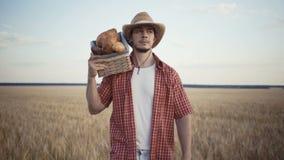Ο νέος αγρότης περπατά κατά μήκος του τομέα σίτου με τα καλάθια ψωμιού απόθεμα βίντεο