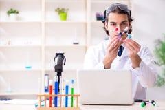 Ο νέος αρσενικός επιστήμονας που εργάζεται στο εργαστήριο στοκ φωτογραφία με δικαίωμα ελεύθερης χρήσης