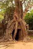 Ο ναός Ankor Wat σε Siem συγκεντρώνει Στοκ φωτογραφία με δικαίωμα ελεύθερης χρήσης