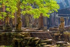 Ο ναός Bayon, Angkor Thom, Siem συγκεντρώνει Στοκ Φωτογραφίες