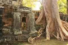 Ο ναός Kdei Banteay, Angkor περιοχή, Siem συγκεντρώνει, Καμπότζη Στοκ εικόνες με δικαίωμα ελεύθερης χρήσης