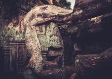 Ο ναός Khan Preah, Angkor, Siem συγκεντρώνει, Καμπότζη Στοκ φωτογραφίες με δικαίωμα ελεύθερης χρήσης