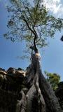 Ο ναός Khan Preah, Angkor, Siem συγκεντρώνει Στοκ εικόνα με δικαίωμα ελεύθερης χρήσης