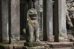 Ο ναός Siem ζουγκλών συγκεντρώνει, Angkor Wat, Καμπότζη Στοκ Φωτογραφία