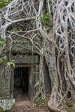 Ο ναός Siem TA Prohm συγκεντρώνει, Angkor Wat, Καμπότζη Στοκ Φωτογραφία