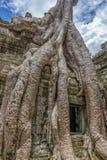 Ο ναός Siem TA Prohm συγκεντρώνει, Angkor Wat, Καμπότζη Στοκ εικόνες με δικαίωμα ελεύθερης χρήσης