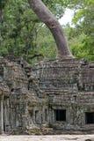 Ο ναός Siem TA Prohm συγκεντρώνει, Angkor Wat, Καμπότζη Στοκ εικόνα με δικαίωμα ελεύθερης χρήσης