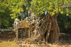 Ο ναός SOM TA, Angkor περιοχή, Siem συγκεντρώνει, Καμπότζη Στοκ φωτογραφία με δικαίωμα ελεύθερης χρήσης