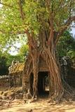 Ο ναός SOM TA, Angkor περιοχή, Siem συγκεντρώνει, Καμπότζη Στοκ Φωτογραφία